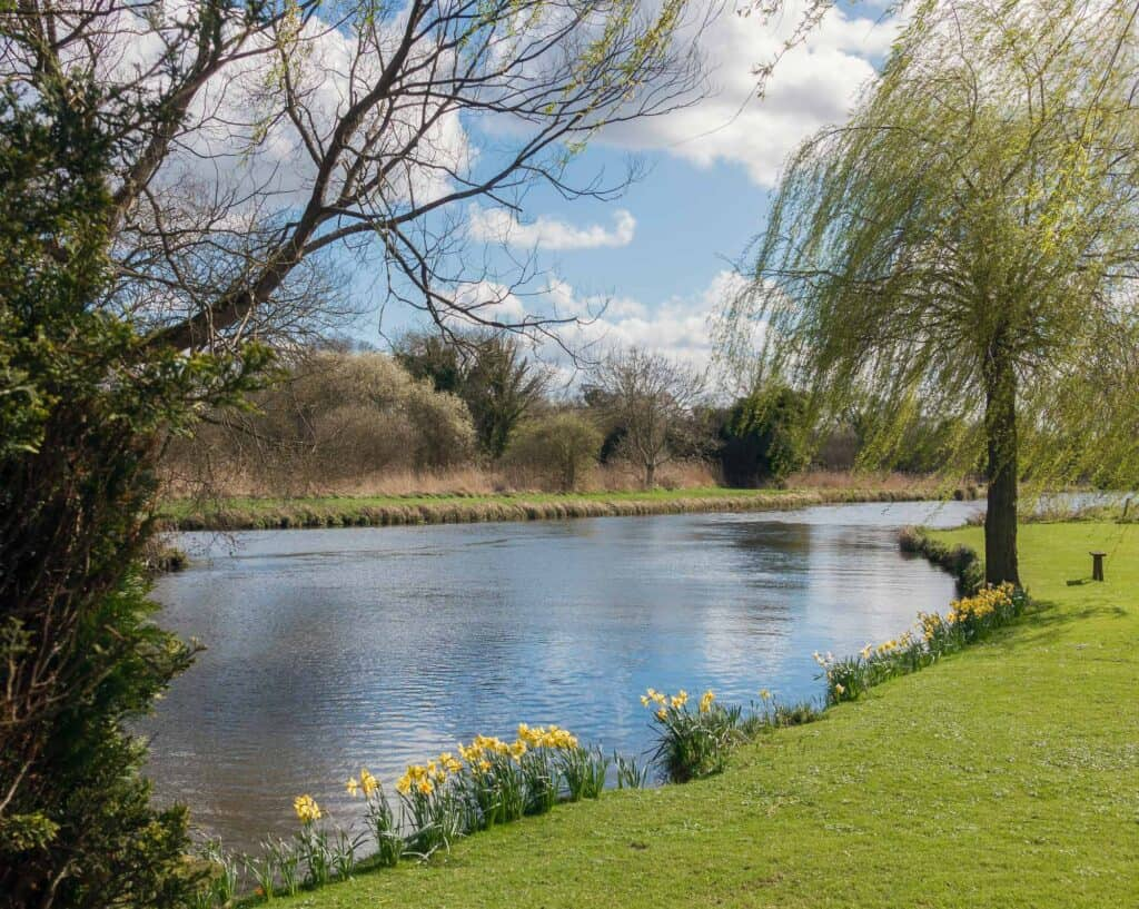 Whitchurch Removals, River Test, Hampshire