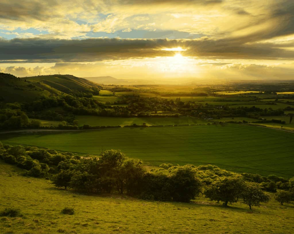 South-Downs-National-Park-image-for-Liss-removals
